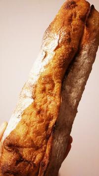 le petitmec HIBIYA 続き。 - パンによるパンのための