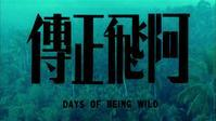 欲望の翼(阿飛正傳) - 香港熱