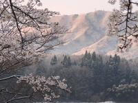 春の雪。何とも美しい大朝の朝。 - 大朝=水のふる里から