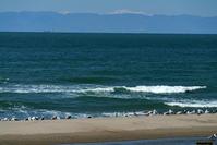 海を見ていた・・ - デジタルで見ていた風景