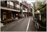 四谷荒木町 - Camellia-shige Gallery 2