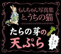 もんちゃんとお庭散歩&たらの芽の天ぷら!!! - お料理王国6