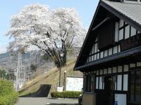 訪日客の旅行の不便;ATMと駅のゴミ箱とホテルの料金表示 - チェンマイUpdate