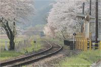 桜と鉄道の風景#4 - あ お そ ら 写 真 社