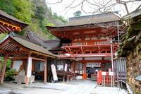 サクラまだ残る 談山神社3回目 - 平凡な日々の中で