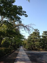 花冷え座禅の会 - MOTTAINAIクラフトあまた 京都たより