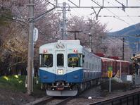 富士急「夜桜登山電車」運行 - 富士急行線に魅せられて…(更新休止中)