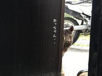 もじもじハルくん - gin~tetsu~nosuke