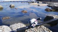 加古川シーバス調査…明石の釣り@ブログ - 明石の釣り@ブログ