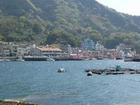 大瀬まつり内浦漁港祭 - 風の便り