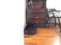 ネコ: キャリーの上 - にゃんこと暮らす・アメリカ・アパート(その2)