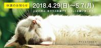 ゴールデンウィーク休講のお知らせ - 大阪の絵画教室|アトリエTODAY