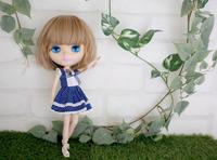 リサちゃんに新しいウィッグ装着 - T's Photo Diary2(Grass Field*)