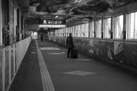 Snap No282 - MASIなPhoto Life