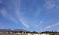 悠々とながれる雲とおかめ桜 - まったりゆっくり過ごす日々