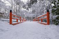 雪の京都2018三千院雪景色(後編・有清園~奥の院) - 花景色-K.W.C. PhotoBlog