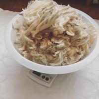 原毛洗い - soramame mitten