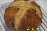 ライ麦カンパーニュ!! - パン・お菓子教室 「こ む ぎ」