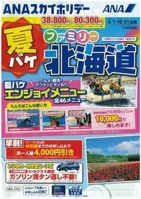 夏に向けて、おすすめのパンフレットが届きました! - 熊本の旅行会社 ゆとり旅