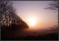 春の霧 - 好い加減に過ごす2