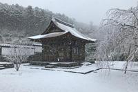 雪化粧の鎌倉 - 堂宮大工 内田工務店 棟梁のブログ