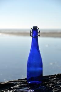 青い瓶 - こんなものを見た2