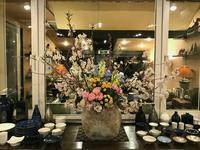 「名残りの桜♪」 - Salon de deux H