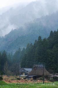 雨の美山 ** - ふわふわ日和