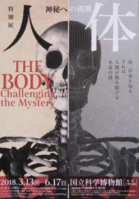 特別展 人体 神秘への挑戦 - ほうじ茶が好き