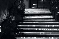 夜の階段 - モノクロ備忘録