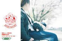 4/14(土)〜4/18(水)は、東急ハンズ松山店に出店します!! - 職人的雑貨研究所