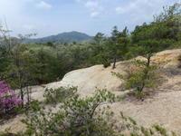 久々に山の中の湿地へ - 加茂のトンボ (トンボ狂会)