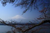 30年4月の富士(2)河口湖の富士 - 富士への散歩道 ~撮影記~