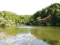 まぶしい季節 - 千葉県いすみ環境と文化のさとセンター