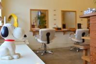 ジェイソン - 館林の美容室~一人だから誰にも気を使わないプライベートな空間~髪を傷ませたくないあなたの美容室~パーセプション のウェブログ