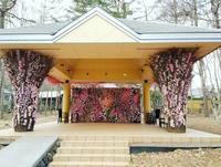軽井沢ホテルブレストンコート ✴ Sakura Wedding ❤ - ぴきょログ~軽井沢でぐーたら生活~