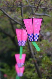 名残り桜の日 - 岳の父ちゃんの PhotoBlog