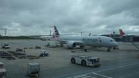 米空港のX線検査について・・・ - ハチドリのブラジル・サンパウロ(時々日本)日記
