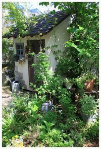 素敵な小屋 - natu     * 素敵なナチュラルガーデンから~*     福岡で庭造り、外構工事(エクステリア)をしてます