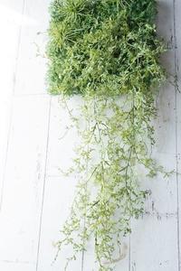 生花以外でも前に進むお手伝い - お花に囲まれて