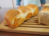 パンドミ@ホシノ酵母はサンドウィッチでミニランチ - 土浦・つくば の パン教室 Le soleil