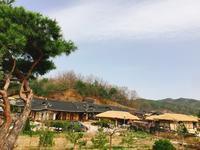 韓国の旅チャン・グンソク君のラブレインロケ地 - 今日も食べようキムチっ子クラブ(料理研究家 結城奈佳の韓国料理教室)