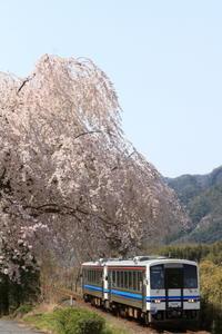 ありし日の三江線-7 - かにさんの横歩き散歩日記