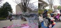 さくら祭り@世田谷美術館を訪ねて - いぬのおなら