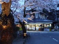 鶴ヶ城本丸茶屋で花見の宴 - 漆器もある生活