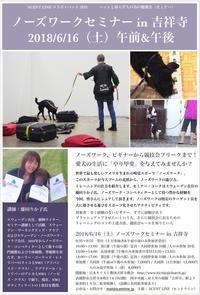ノーズワークセミナーin吉祥寺のお知らせ - Scent Line Blog