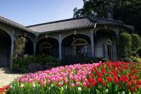 九州・特急の旅春のグラバー園 - リズムのある暮らし