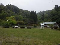 ヒレンジャクはく製展示しました - 千葉県いすみ環境と文化のさとセンター