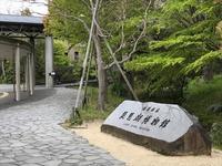 びわ湖カレーと日本酒「金亀」 - SAMとデルソルの「お日様がまぶしい」