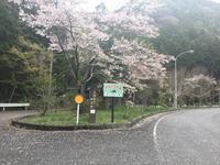 男水湧水愛媛県西予市野村町惣川 - 四国 高知からお気に入りスポットを紹介